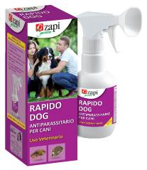 rapido-dog