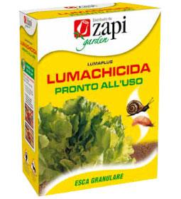 lumachidica